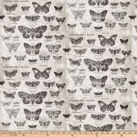 Tim Holtz Foundations Butterfly Taupe