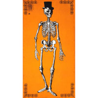Chillingsworth Skeleton Panel Orange