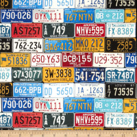 Timeless Treasures License Plates Multi