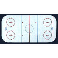 "Sports Life Hockey Field 24"" Panel Ice"