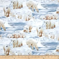 Polar Bears Ice