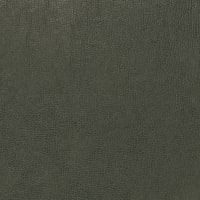 Fabricut 03343 Faux Leather Pine