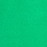 Fabric Merchants Warm Winter Fleece Solid Kelly Green