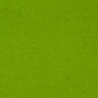The Seasons Melton Wool Collection Limeade