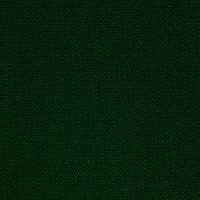 Kaufman Big Sur Canvas Solid Green