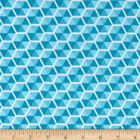 Riley Blake Desert Bloom Hexies Blue