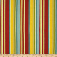 Riley Blake Giraffe Crossing 2 Stripe Multi