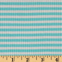 4X2 Rib Knit Small Stripe Ivory/Mint