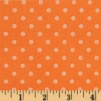 First Blush Daisy Dot Orange