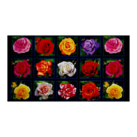 "Rose Garden Digital Print Block 24"" Panel Black"