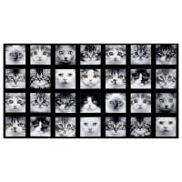 "Adorable Pets Cats 23"" Panel Black"