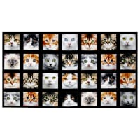 "Adorable Pets Cats 23"" Panel Multi"