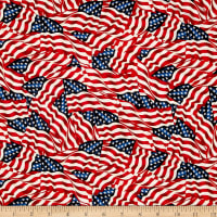 "108"" Wide Quilt Back Flags Multi"