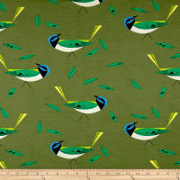 Birch Organic Charley Harper Western Birds Interlock Knit Green Jay