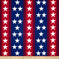 Patriotic 2017 Bunting Stripe Multi