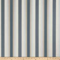 Jaclyn Smith 02621 Sateen Stripes Denim