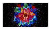 "Timeless Treasures Radiance Allover Flowers Black 23"" Panel"