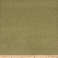 Fabricut Solar Sheen Blackout Basil