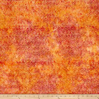 Timeless Treasures Tonga Batik Happy Hour Mini Ikat Canyon