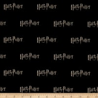 Harry Potter Digital Logo Multi