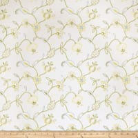 Jaclyn Smith 2609 Lemon Zest