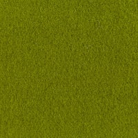 Wool Solid Color Olive