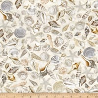 Timeless Treasures Beach Haven Shells Shells