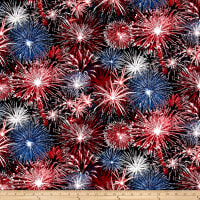 Timeless Treasures American Pride Fireworks USA