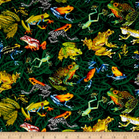 Timeless Treasures Frogs On Leaves Green
