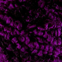 Premier Berber Curly Boucle Yarn Purple Fade 65 Yard