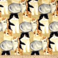 Polar Fleece Kitten Craze Beige/Grey