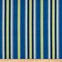 Bryant Indoor/Outdoor Saladino Stripe Aquamarine