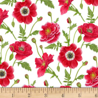 Poppy Perfection Small Poppy Flower White/Red