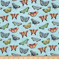 Bookshelf Botanical  Butterflies Aqua