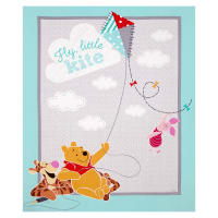"Disney Pooh Everyday Fly Little Kite 36"" Panel Mint Green"