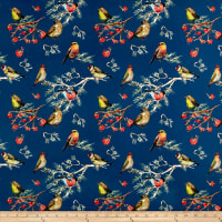 Pine Crest Fabrics Finch Party on Olympus Athletic Double Knit Multi