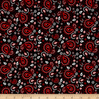 Patchwork Farms Paisley Bandana Black
