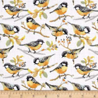 Songbirds Bird Print White
