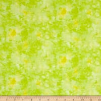 Timeless Treasures Solid-ish Watercolor Texture Citrus