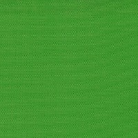 "Glaser Mills 62"" Flag Fabric Scarab Green"