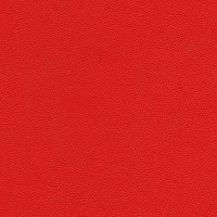 Morbern Allsport Vinyl Autumn Red