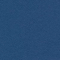 Morbern Allsport Vinyl Royal Blue