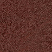 Abbey Shea Galveston Faux Leather Wine