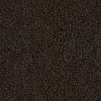 Abbey Shea Oklahoma Faux Leather Dark Brown