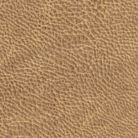 Abbey Shea Galveston Faux Leather Sand