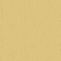 Abbey Shea Cycle Jacquard Champagne