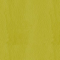 AbbeyShea Miami Faux Leather Citron