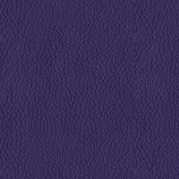 Abbey Shea Kendrick Faux Leather Plum