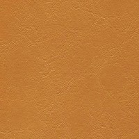 Enduratex Jet Stream Vinyl Gold Rush