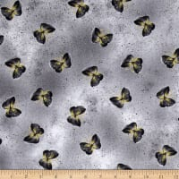 Kanvas Floral Impressions Butterfly Wash Light Gray
